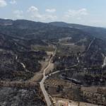 Il n'y a plus de front actif massif, selon un porte-parole des pompiers. ALKIS KONSTANTINIDIS / REUTERS
