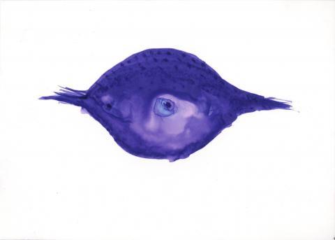 Makhi Xenakis, encre bleu