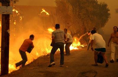 Les habitants participent aux côtés des pompiers à la lutte contre les feux mais la violence les vents qui soufflent jusqu'à 9 beauforts rend leur tâche difficile et même dangereuse.