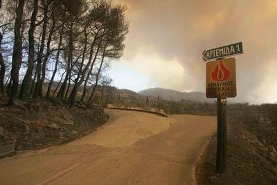 """""""Attention danger incendies"""" continue d'indiquer le panneau au bord de la route pour Artemida où l'on déplore 11 victimes"""