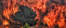 Des pompiers luttent contre les flammes dans le village de Kineta près d'Athènes le 24 juillet 2018. © VALERIE GACHE / AFP/ VALERIE GACHE