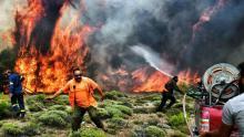 Des pompiers tente d'éteindre un feu de forêt près du village de Kineta, dans la banlieue d'Athènes, le 24 juillet 2018.