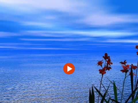 Θάλασσα Θάλασσα - Νίκος Νομικός
